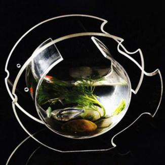 Красивый аквариум из оргстекла